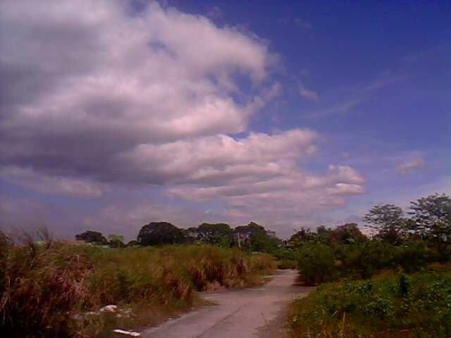 clouds along the road